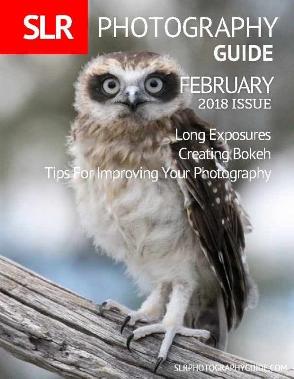 SLR Photography Guide – February 2018